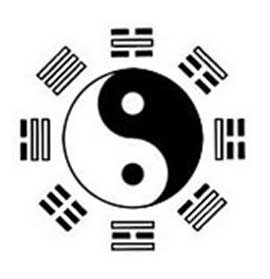 2012-02-18-2007-07-13-yin_yang_grams dans Le Livre des Questions