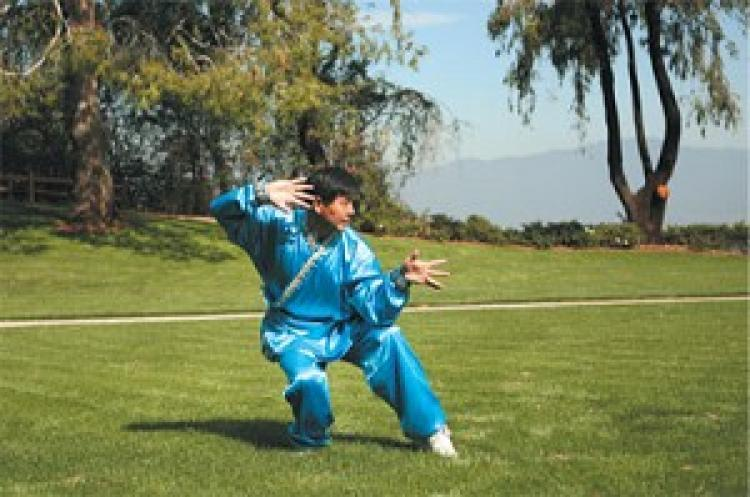 Les arts martiaux chinois une culture de transmission divine for Maitre art martiaux chinois