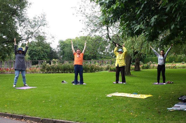 Irlande sensibiliser propos du falun gong aux jardins for A propos du jardin